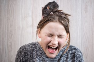 The girl in panic shouting. On her head sits a rat