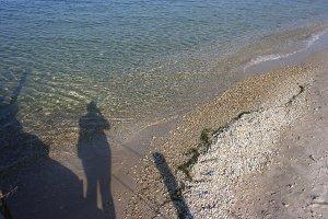 Shadow on Beach in Door County
