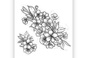 Vintage template with sakura flowers