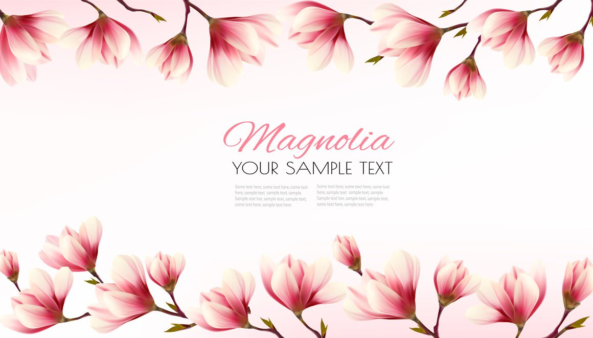 Nature flower frame with magnolia ~ Illustrations ~ Creative Market