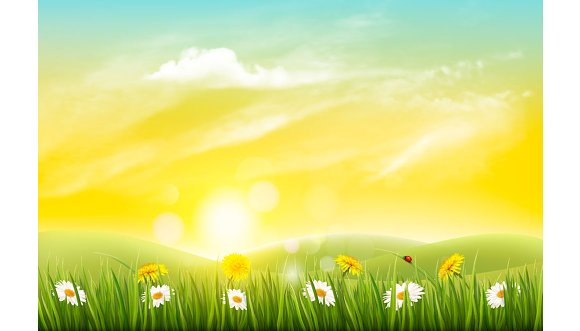 Happy Summer Holidays Background