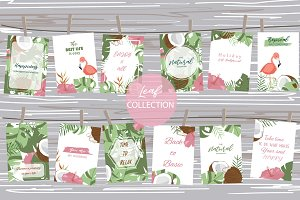 12 cute tropical design cards1#