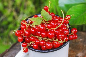 Red currant in a metal mug on the st