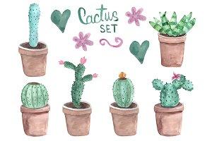 Watercolor cactus. Vector.