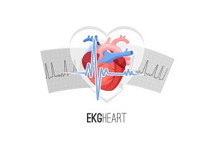 EKG readings on paper and human heart promo emblem