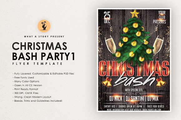 CHRISTMAS BASH PARTY 1