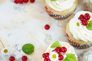 Gentle cupcake with cream and berrie