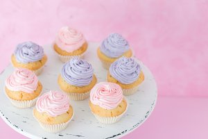 Cupcakes with pink and violet cream
