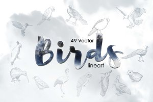49 Birds Vector Lineart