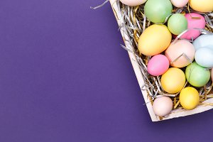 Colorful eggs in a tray on violet