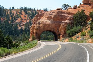 Red Canyon Road