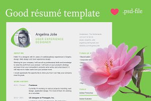 Marvellous resume template