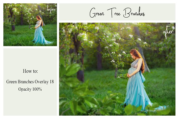 120 Green Tree Branches Overlays in Photoshop Layer Styles - product preview 1