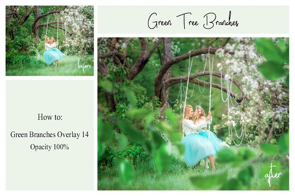 120 Green Tree Branches Overlays in Photoshop Layer Styles - product preview 2
