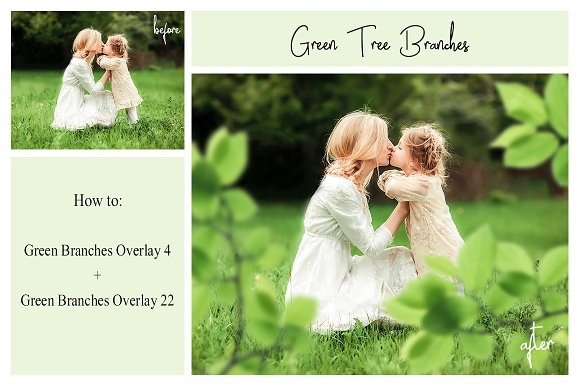 120 Green Tree Branches Overlays in Photoshop Layer Styles - product preview 3
