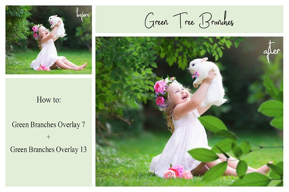 120 Green Tree Branches Overlays in Photoshop Layer Styles - product preview 4