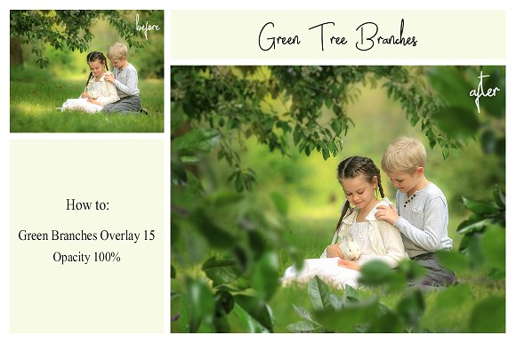 120 Green Tree Branches Overlays in Photoshop Layer Styles - product preview 5
