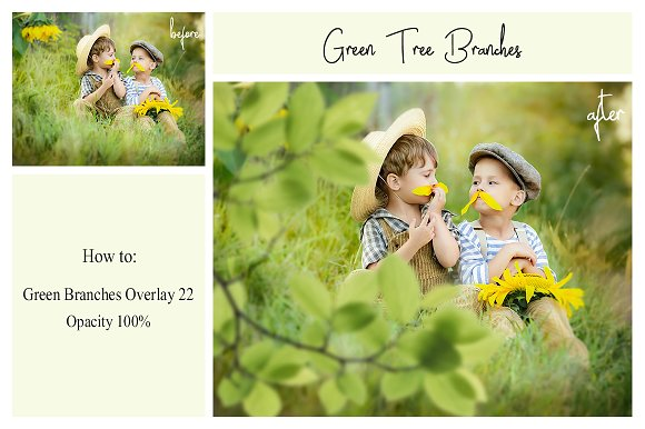 120 Green Tree Branches Overlays in Photoshop Layer Styles - product preview 7