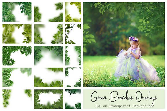 120 Green Tree Branches Overlays in Photoshop Layer Styles - product preview 9