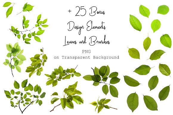 120 Green Tree Branches Overlays in Photoshop Layer Styles - product preview 11