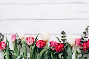 Tulips on a white table