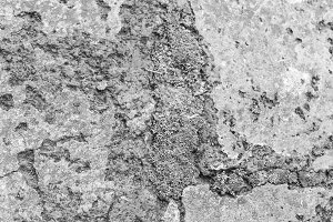 Moss Stone Concrete Black White