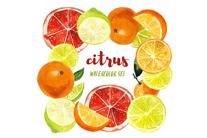 Set of watercolor citrus fruits