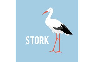 Stork isolated on white background, standing stork in flat style.