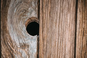 Single dark wood knot in in the wooden textured plank of old aged timber