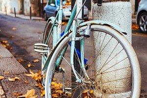 Italian Bicycles