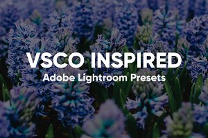 VSCO Inspired Lightroom Preset Pack