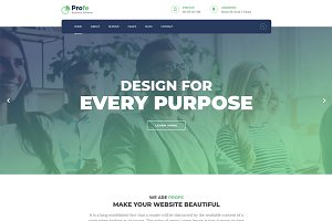 Profe – Multipurpose HTML Template