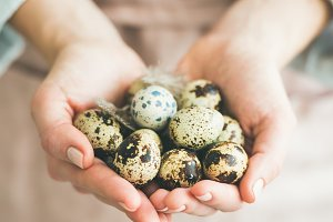 Natural colored quail eggs