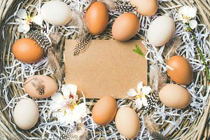 Natural colored eggs for Easter