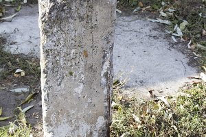 Old concrete column with armature