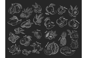 Sketches of isolated fruits. Vegetarian food or nutrition