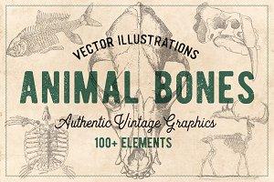 125 Vintage Animal Bones (Vector)