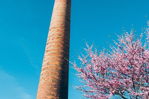 Old brick chimney