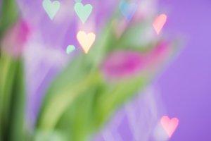 Defocused tulips and bokeh light hearts