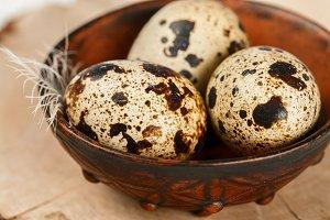 Quail fresh organic eggs