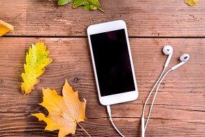 Autumn composition. Colorful leaves, smart phone, earphones. Stu