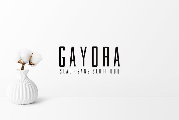 Gayora Slab Serif | Duo Font