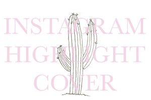 Instagram Highlight Cover Cactus