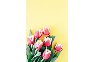 Tulips on yellow background