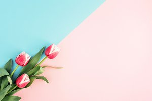 Minimal flower background