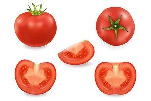Tomato. Vector set.