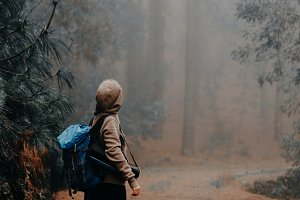 Female traveler wearing hood on the road in the mysterious foggy pine forest and loking up to fever tree. Santo Antao Island, Cape Verde