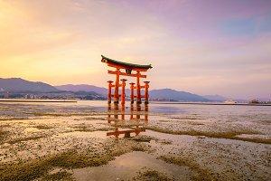 The floating gate of Itsukushima Shr