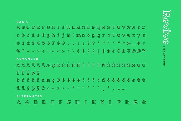 Revive Display Font in Display Fonts - product preview 5