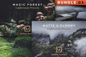 Artist Series – Lightroom Bundle 03